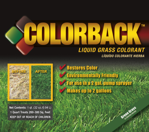 Color Back Ground Cover Restorant